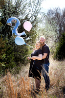 Gender Reveal - TWINS